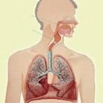 Meal dyspnea