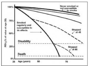 "Figure 1) Fletcher and Peto proposed the ""horse-racing effect"" in the rate of decline of lung function in smokers. Smokers who are not susceptible to smoke have a similar rate ofdecline to that of nonsmokers. Susceptible smokers do not begin to diverge significantly from nonsmokers until about 35 years of age after many years of smoking; from that point on, the fall in forced expiratory volume in 1 s (FEV1) is precipitous. Adapted with permission from reference 17"